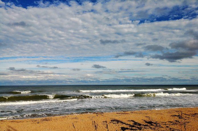 Playa de Coquina. Pixabay