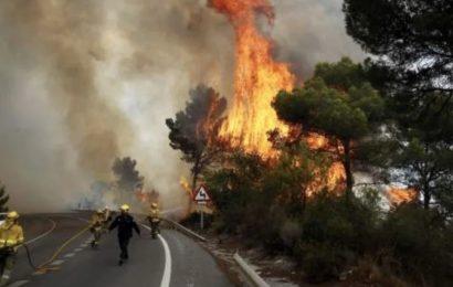 El incendio de Málaga ya es descrito como el primero de sexta generación en España