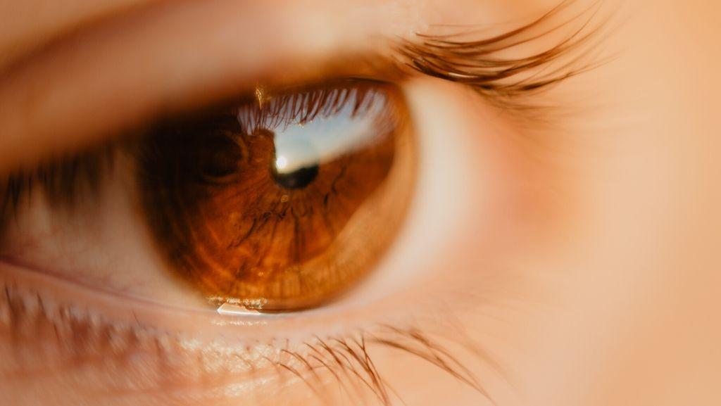 El poder de la mirada