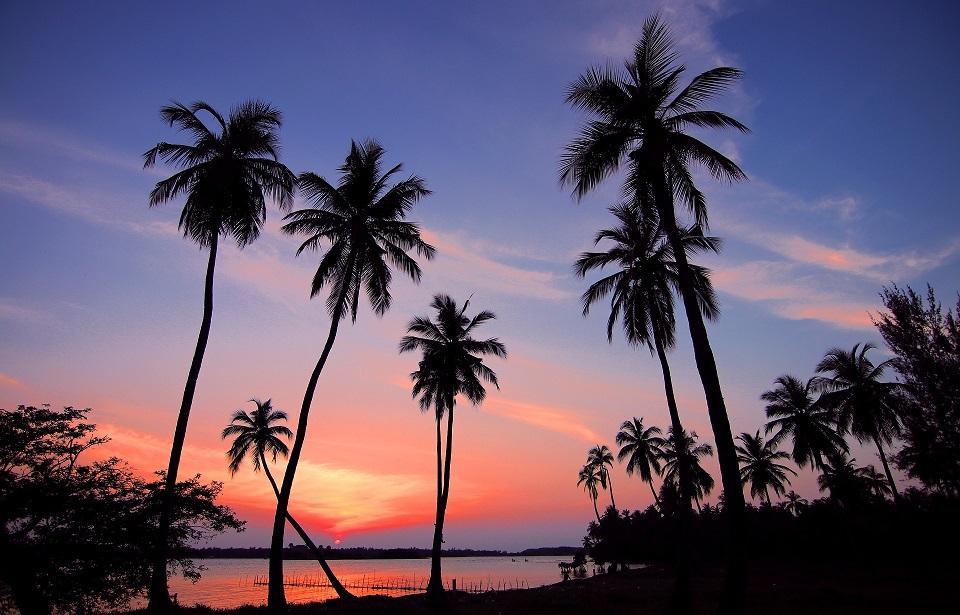 Escapada a Sri Lanka