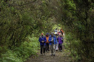 Vuelve Tenerife Walking Festival en formato mixto, para exportar el destino Tenerife como referente de turismo sostenible y activo