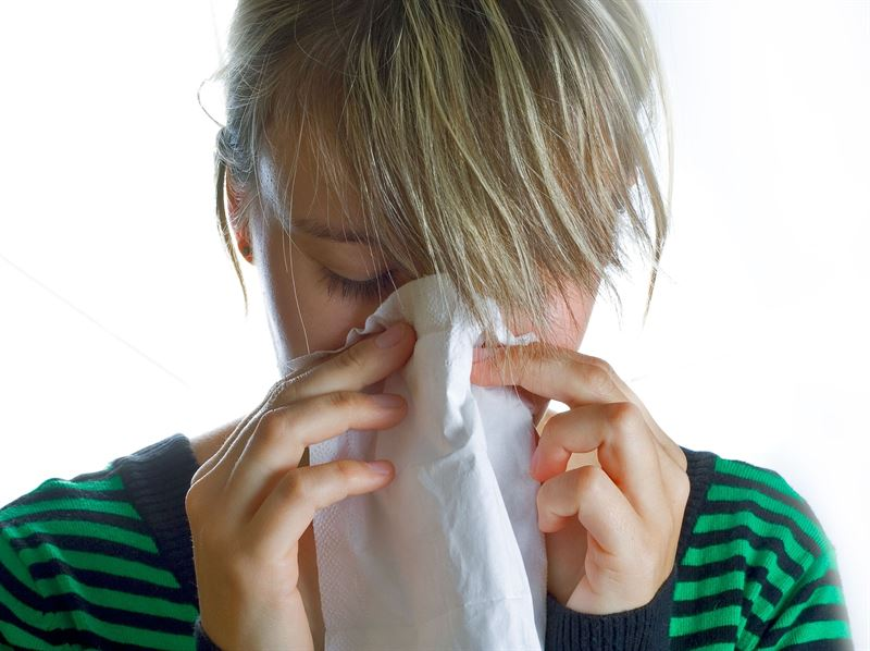 La alergia desempeña un papel muy importante en el desencadenamiento del asma ya que hasta la mitad de casos tiene un origen alérgico. | EP