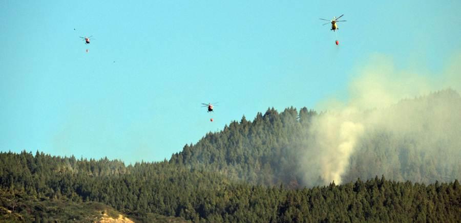 El Gobierno de Canarias declara la alerta por Riesgo de Incendio Forestal