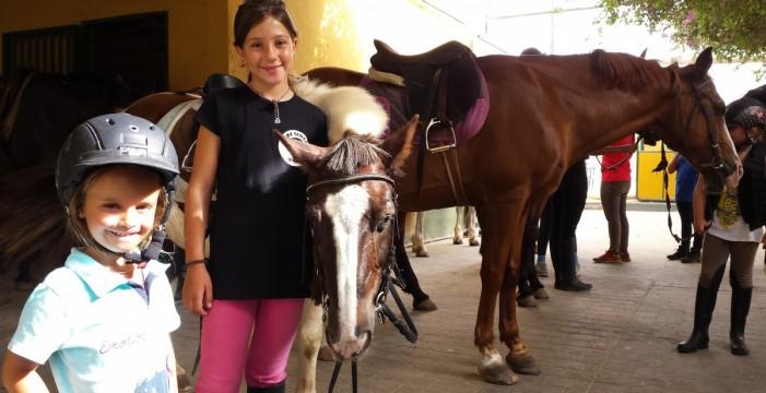 Terapia de caballo