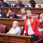La portavoz del grupo parlamentario de Podemos, Noemí Santana, interviene en una sesión plenaria. / FRAN PALLERO