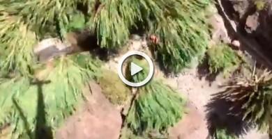 Rescatan a un senderista herido en el barranco de Masca