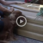 Perro funeral Italia terremoto