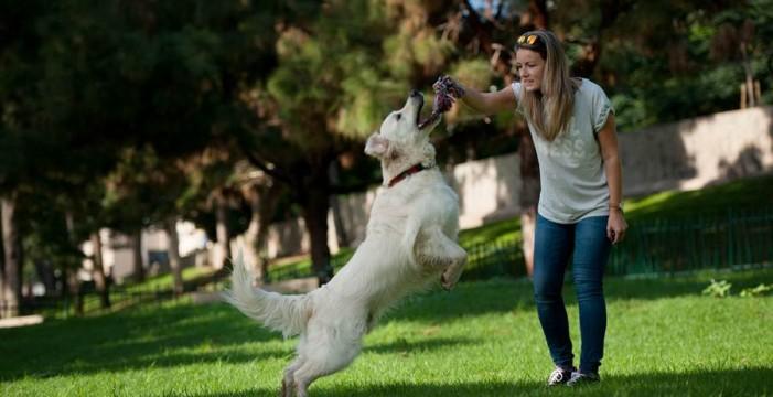Resultado de imagen para hacer deporte con la mascota