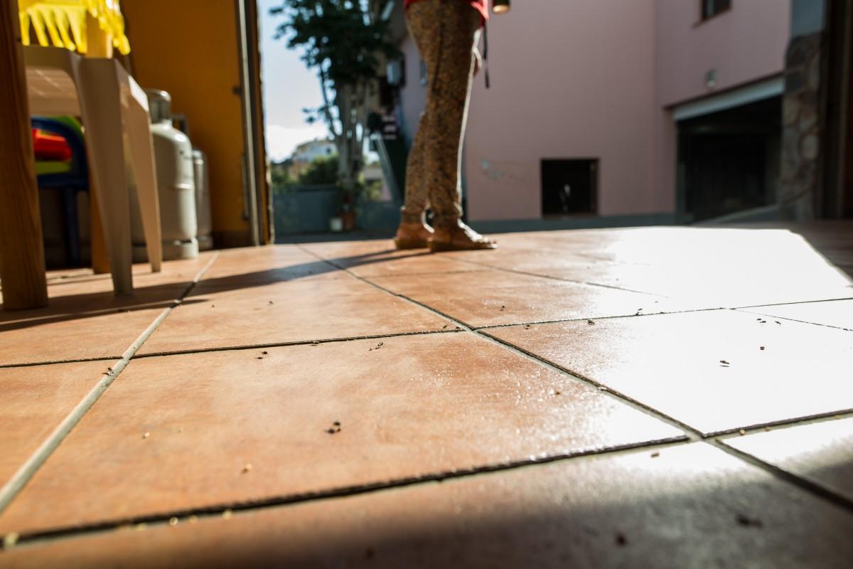 Invasión de moscas en dos barrios de La Orotava |FOTO: Andrés Gutiérrez