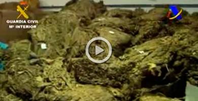 Intervenidas 108 toneladas de tabaco y picadura, el mayor alijo en España