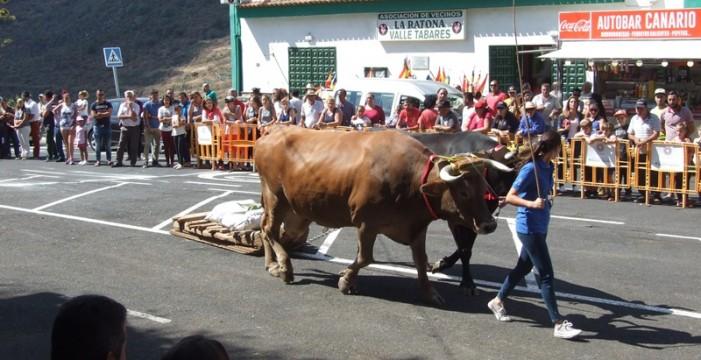 Canarias y País Vasco acuerdan la celebración de encuentros de deportes autóctonos