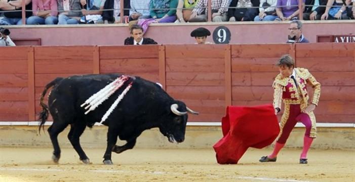 El Gobierno recurrirá al TC la Ley balear sobre toros por invasión de competencias