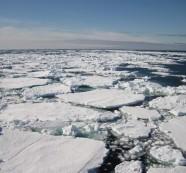 Deshielo sin precedentes en glaciares de la Antártida Occidental