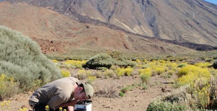 El IGN comienza el estudio más completo hasta ahora sobre la actividad del Teide y Pico Viejo