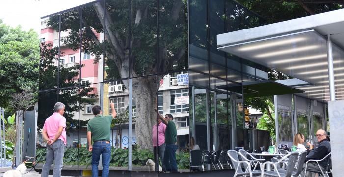 Los kioscos de Weyler y La Paz solicitan ampliar sus terrazas