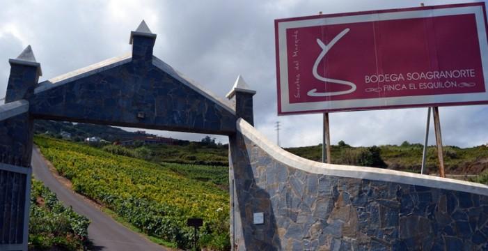 Suertes del Marqués, galardón Mejor Labor en Vinos