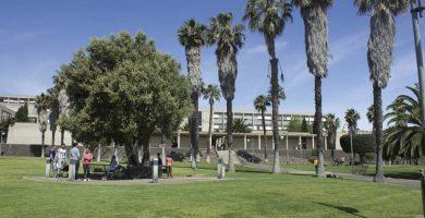 Aprueban cuatro titulaciones nuevas para el próximo curso académico de la ULL