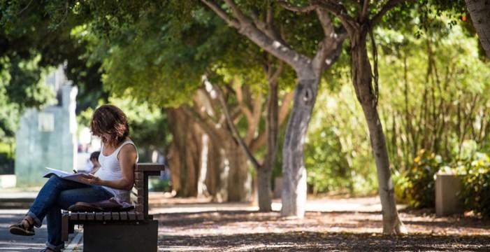 Los vecinos del Parque García Sanabria demandan más policía e iluminación