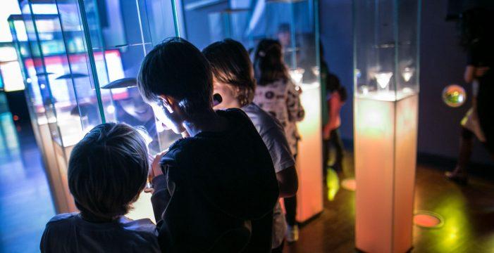 'Noche en el museo' de la Naturaleza y el Hombre