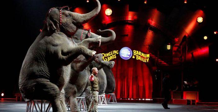 Cierra el circo más antiguo del mundo