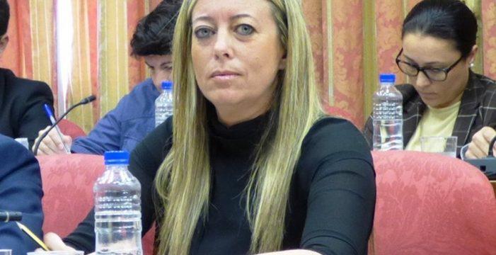 El PP critica que pocas empresas acaparen las obras del Cabildo