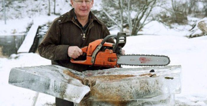 Aparece un zorro congelado en pleno temporal en Alemania