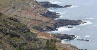 En estado grave un pescador al caer en una zona de rocas en El Sauzal (Tenerife)