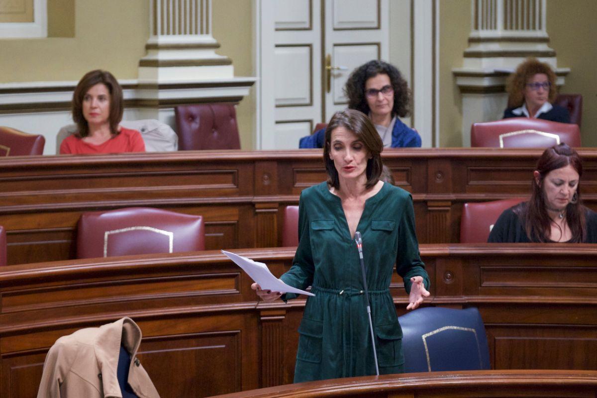 La consejera de Turismo, Cultura y Deportes, María Teresa Lorenzo, ante el Parlamento de Canarias. DA