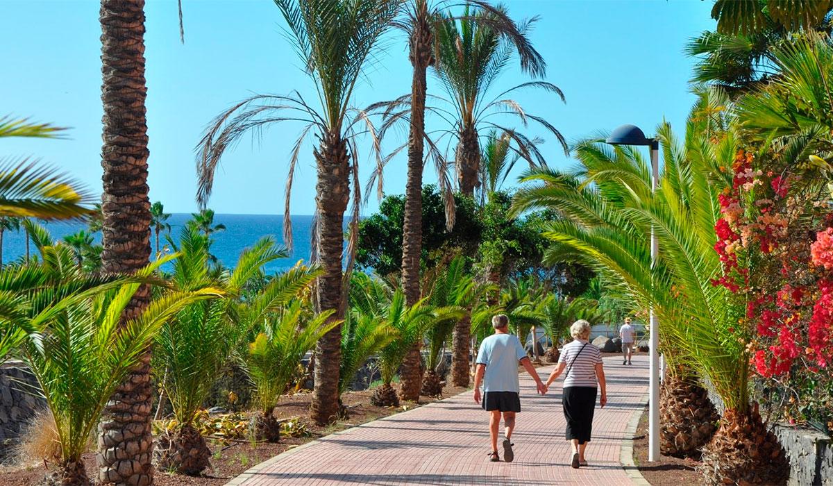 El turismo crece un 6 en el sur de tenerife en 2016 for Oficina de turismo de tenerife