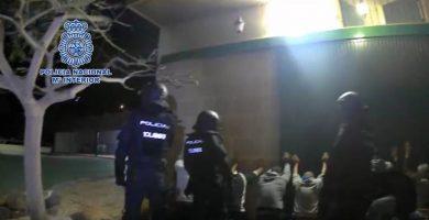 Así fue la redada contra los maltratadores de perros en Tenerife