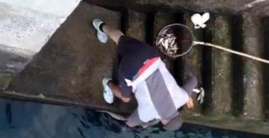 La sorprendente amistad entre una raya y un pescador en Lanzarote