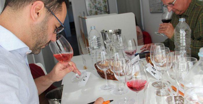 Más de 150 vinos compiten por ser el mejor de Canarias