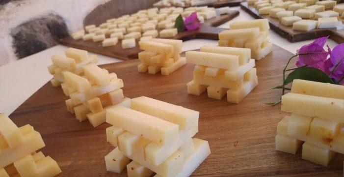 Un total de cinco quesos canarios han sido premiados en el GourmetQuesos