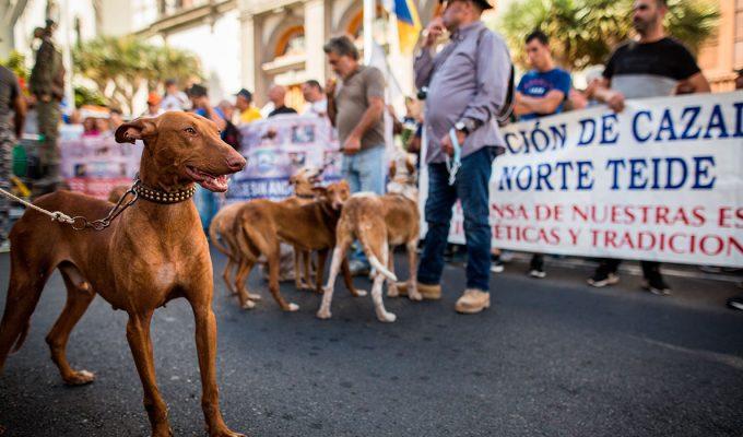 Los cazadores defienden en la calle que no son maltratadores y los animalistas se contramanifiestan