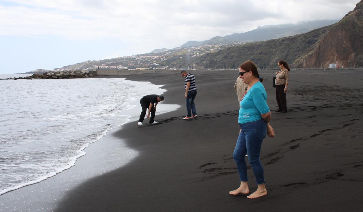 Primeros visitantes de la playa. / DA