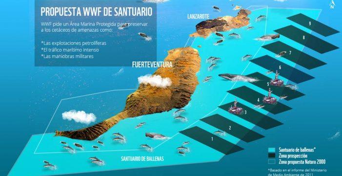 El santuario de cetáceos canario, en las Cortes con 52.000 firmas