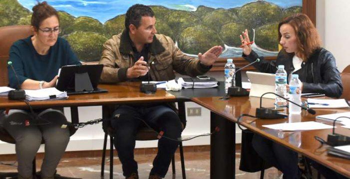Olivia Delgado pide un pleno urgente para paralizar las obras de parques eólicos en Arico