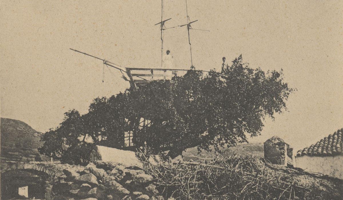 Foto antigua, del archivo de fotografía histórica de Canarias del Cabildo de Gran Canaria, de una postal con el antiguo barco sobre el árbol. DA