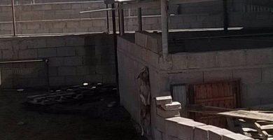 Un perro ahorcado y otros en condiciones pésimas en Arico