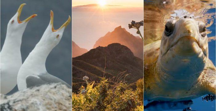 'The Canary Islands', las islas al límite del mundo