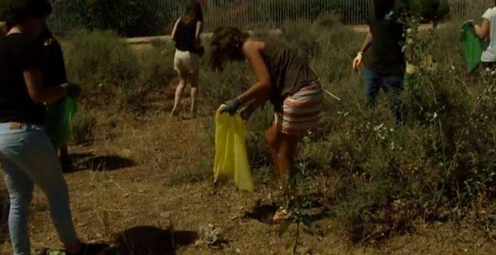 Nueve espacios naturales de Canarias, libres de basura con campaña de limpieza
