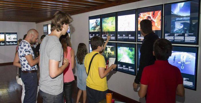 La Fundación CajaCanarias presenta dos nuevas exposiciones en el Espacio Cultural La Palma