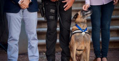 Nira, una de las perras homenajeadas, recibe la caricia de Zaida González, concejal de Seguridad Ciudadana que ha impulsado la iniciativa | FOTO: Fran Pallero
