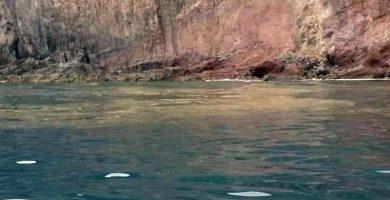Detectan una enorme mancha de contaminación frente a la Playa de Las Gaviotas