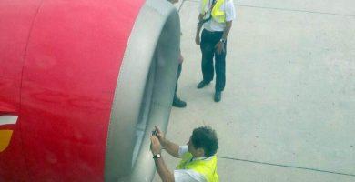 Un ave impacta en el motor de un avión con destino Madrid y tiene que aterrizar en Gran Canaria