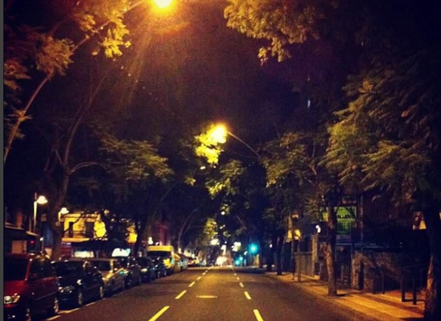 Imagen de archivo de las jacarandas de noche. M.P