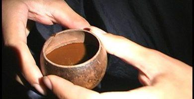 La ayahuasca contiene DMT, una sustancia que provoca alucinaciones a quienes la consumen. FLICKR
