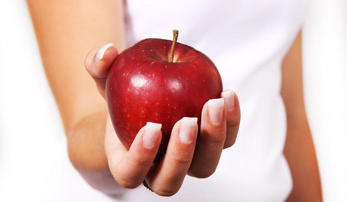 Para Adelgazar Hay Que Comer Muchos D As Bien Y Uno Mal Y No  ~ Como Adelgazar Comiendo De Todo