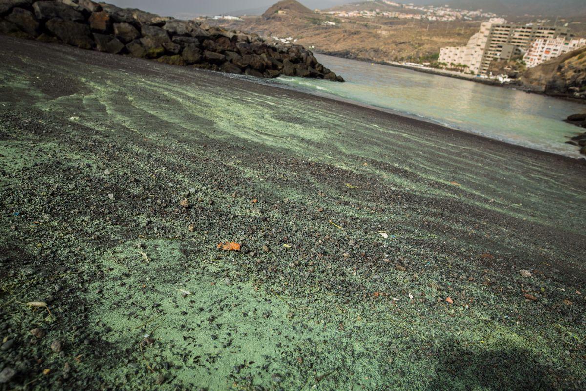 Grandes concentraciones de microalgas en Radazul | Andrés Gutiérrez