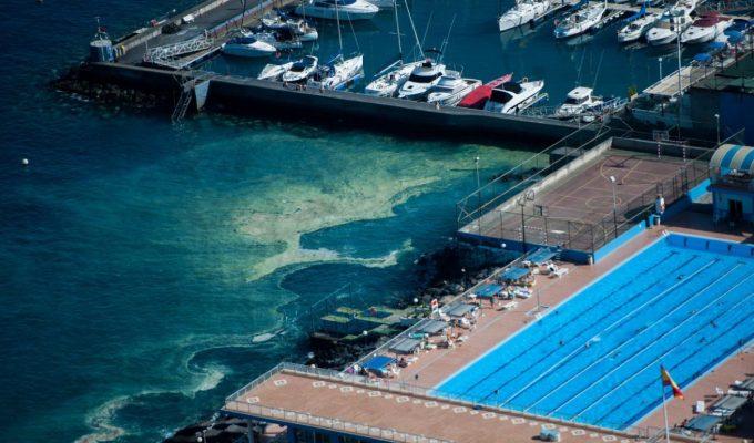 El Gobierno quiere zanjar ya que las microalgas no viven del agua residual, el PP le exige más rigor